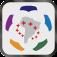 Copa Bridgestone Libertadores 2013